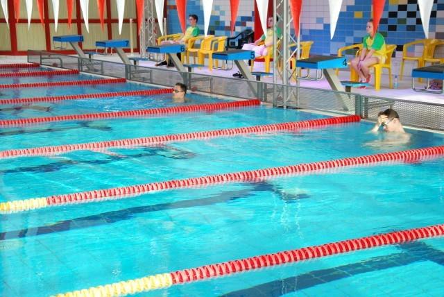 """Zwei """"Hasen"""" warten auf Rückenschwimmer Jan-Philip Glania"""