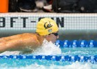 Gutierrez, Josa Make Season Debut as Cal Takes Down Arizona
