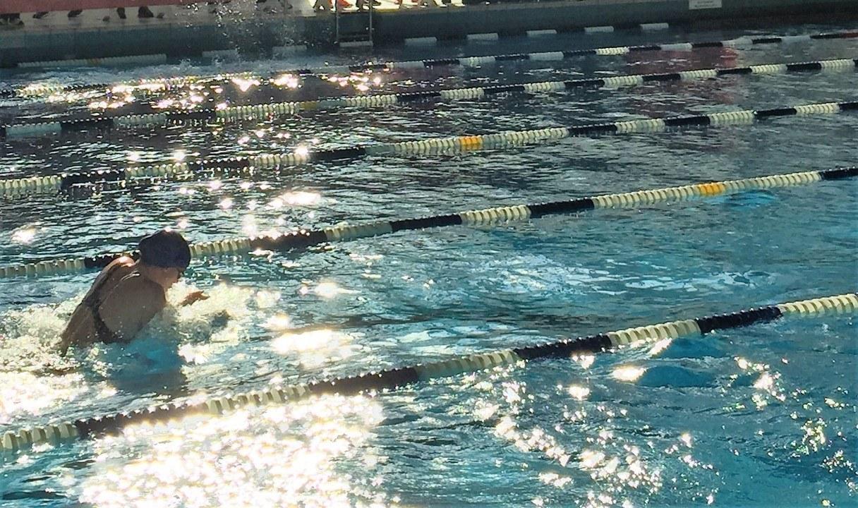 Wie Goethe das Schwimmerleben erleuchtet