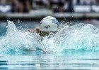 MP Swim Tips by Bob Bowman: Better Breaststroke
