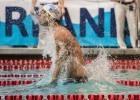 Michael Phelps (photo: Mike Lewis)