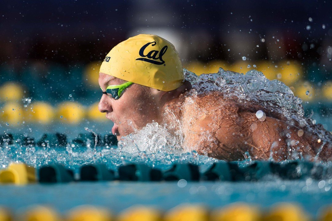 Cal's Andrew Seliskar Named Pac-12 Men's Swimmer Of The Month