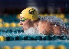Seliskar Wins 200 Fly, 200 Breast in Dual with Utes