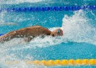 Watch Florent Manaudou's 21.72 Comeback Race From Sette Colli