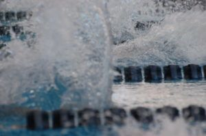 Swim of the Week: FGCU Quartet Scores 189 Final-Day Points To Force CCSA Tie