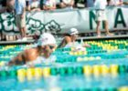 Junior Pan Pacs stock by Mike Lewis (1 of 1)