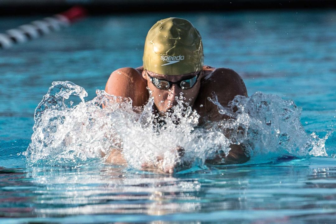 Adrian and Thiago score most dominant races in pre-taper competition