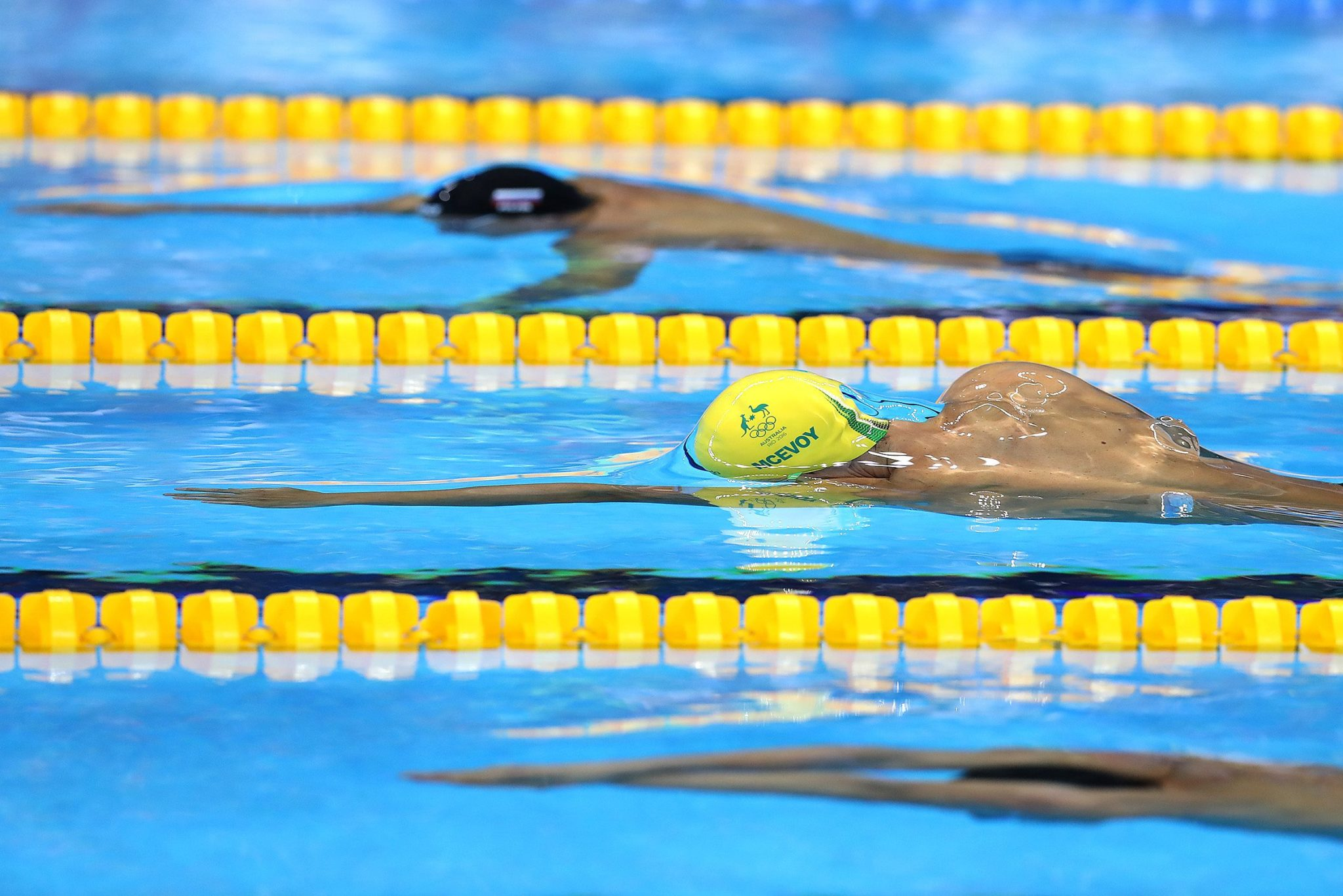 the swimmer analysis essay