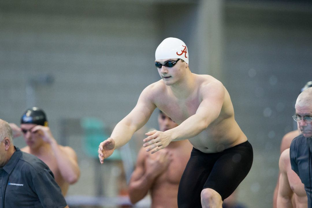 Lisa Bratton, Luke Kaliszak Named Top SEC Scholar-Swimmers