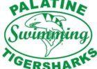 Palatine Park District Part Time Assistant Developmental Coach