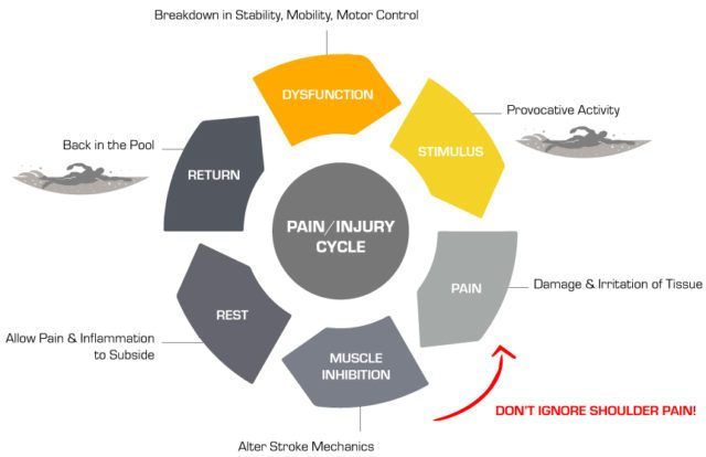 pain-injury-cycle