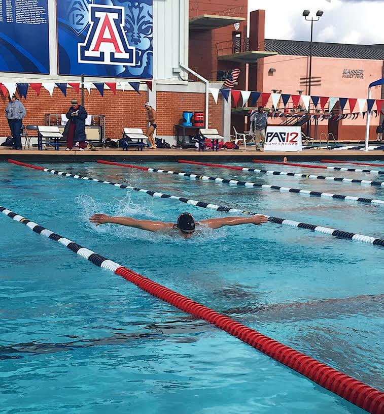 Arizona swimming and diving to receive 15 million for renovations for University of arizona swimming pool