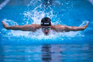 Top 10 Performances from the 2020 FINA Champions Series