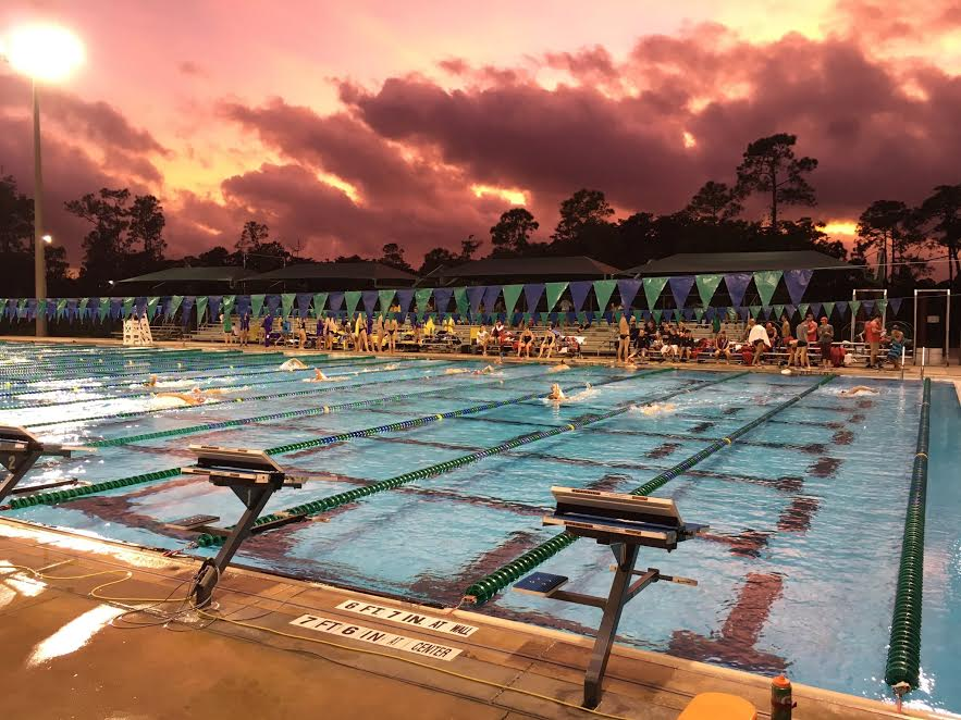 Eagle Swim Camps – Sign Up Today!