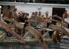 Boston College Men & Women Swim Past Tufts
