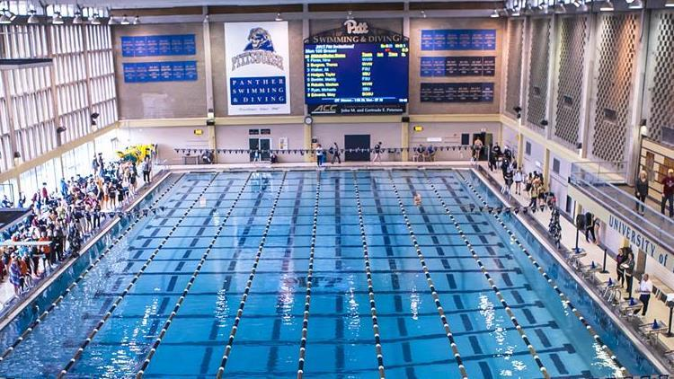 Katie Hazelton Named Pitt Diving Head Coach