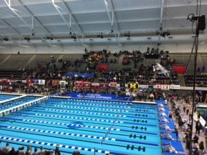 Stands Half-Empty at the IUPUI Natatorium at Women's NCAAs