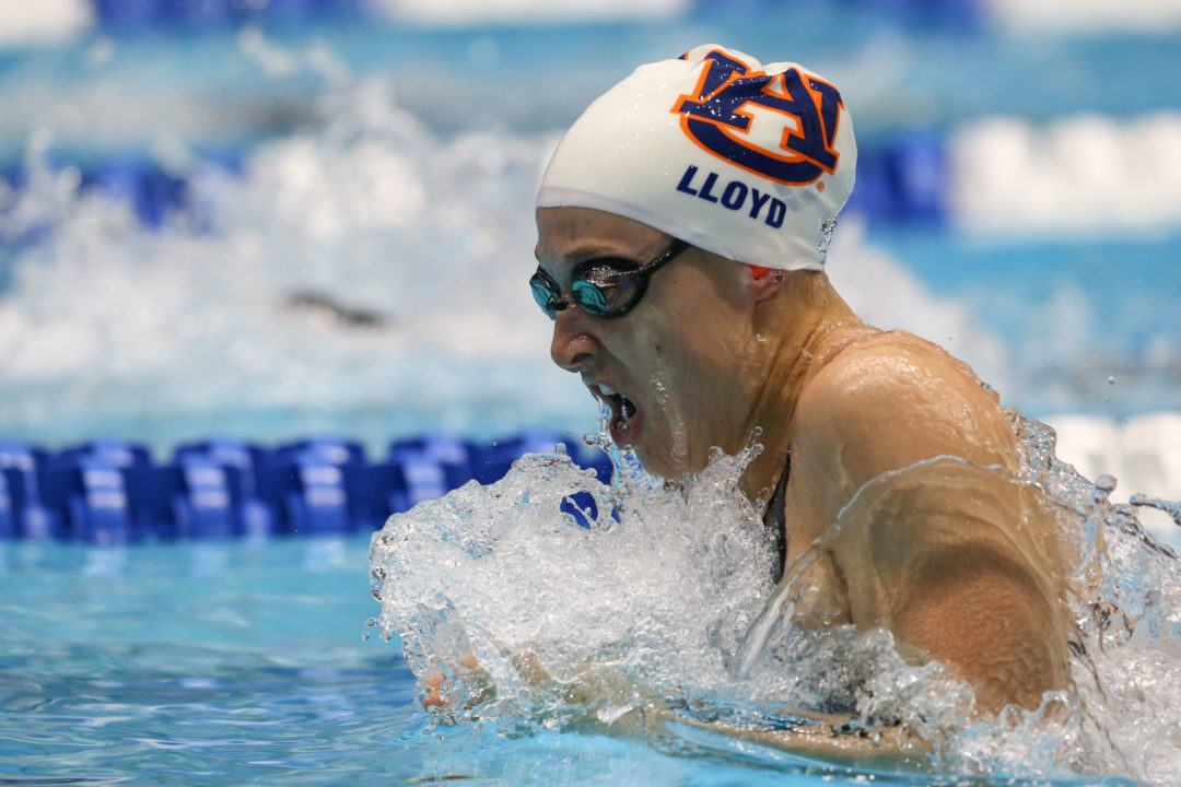 2019 Auburn War Eagle Swim Camps – Sign Up Today