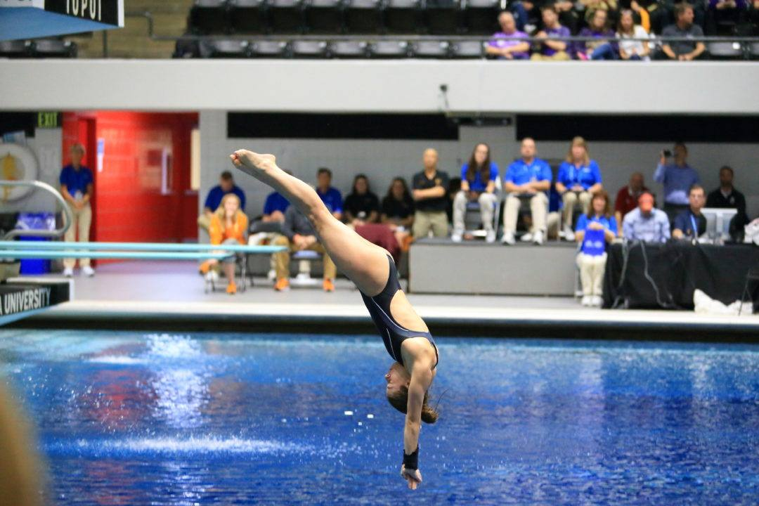 Brooke Schultz Wins 3-Meter Gold At 2017 USA Diving Winter Nationals