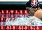 2018 Pac-12 Women's Champs Fan Guide: Stanford Poised to Dominate