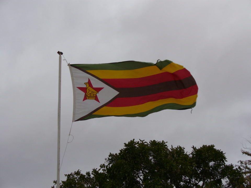 Le Zimbabwe sélectionne 2 nageurs et 2 nageuses pour les Mondiaux