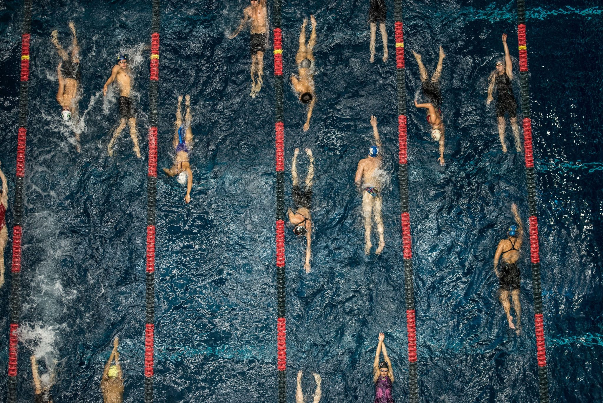 Free Webinar: Coaching Distance Swimmers With Olympic Coach Catherine Kase