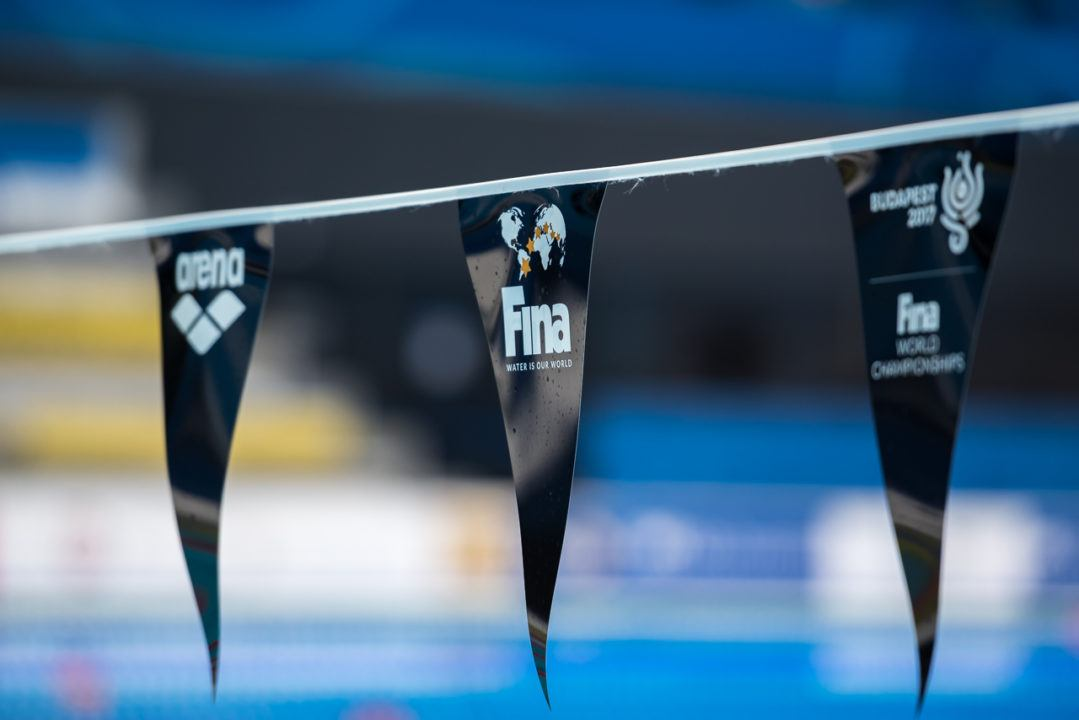 2019 FINA World Championships Dates Released