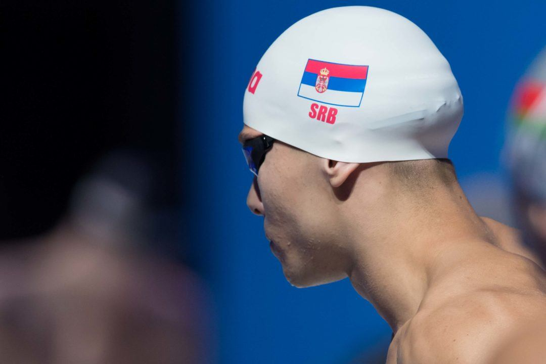 Sabo Overpowers Cseh To Take 50 Fly Gold; Kesely Tops Hosszu & Kapas