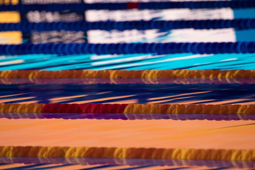 2017 Swammy Awards: Para Swimming Honors Left Vacant