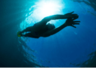 How You Can Approach Your Open Water Fears As A Swimmer
