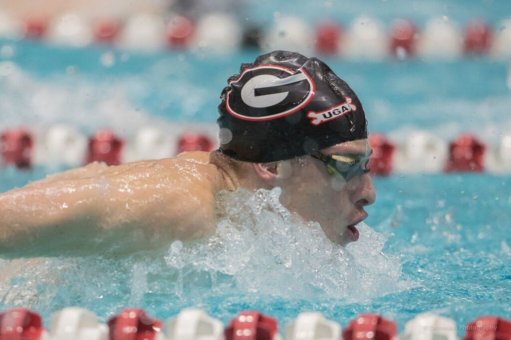 Distance Swimmer Greg Reed Coming Into His Own At UGA