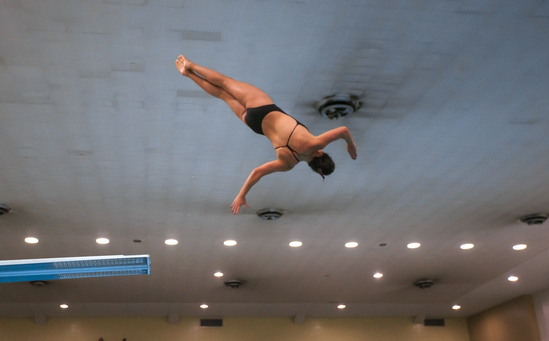 Houston's Micaela Bouter Named AAC Diver Of The Week