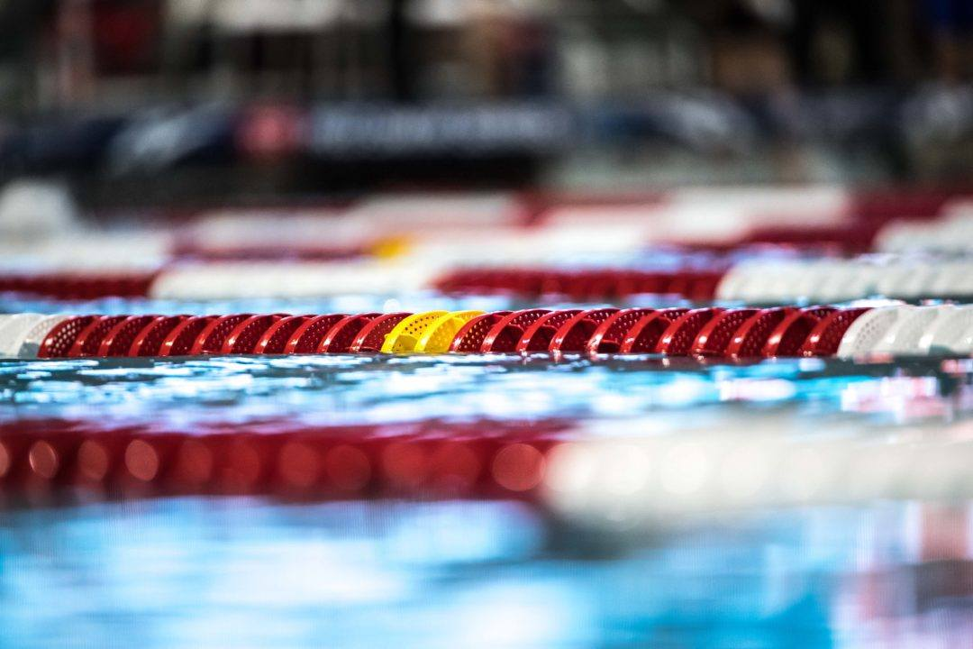 59.8 Breaststroker Sofia Carnevale Transfers from UNLV to Georgia