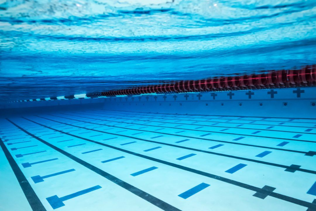 Shouts From the Stands: Swimming's Technological Revolution