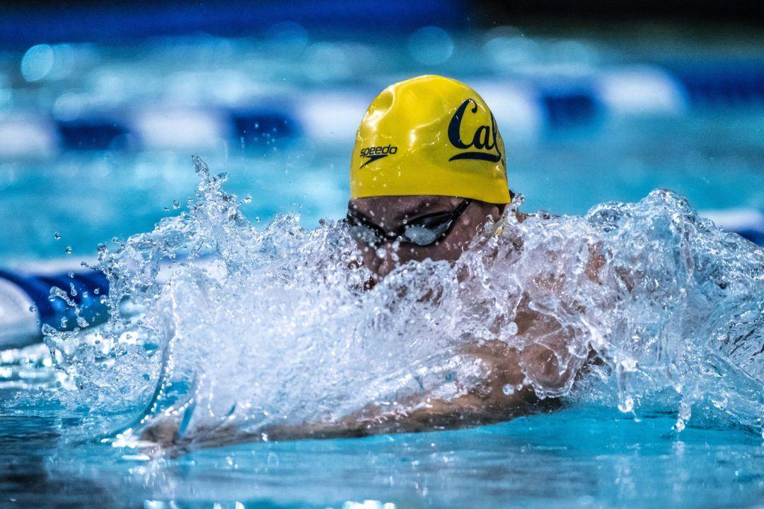 723 New Swim Jobs You Might Love