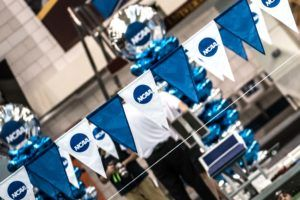 NCAA backstroke flags by Mike Lewis