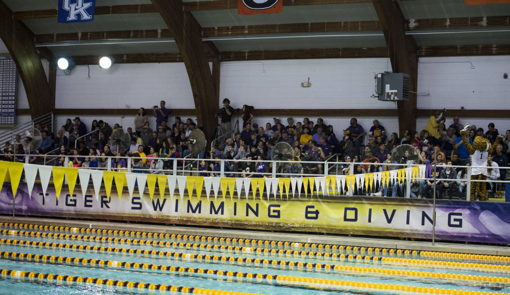 LSU Adds Canadian Diver Aimee Wilson To Incoming Class Of 2018