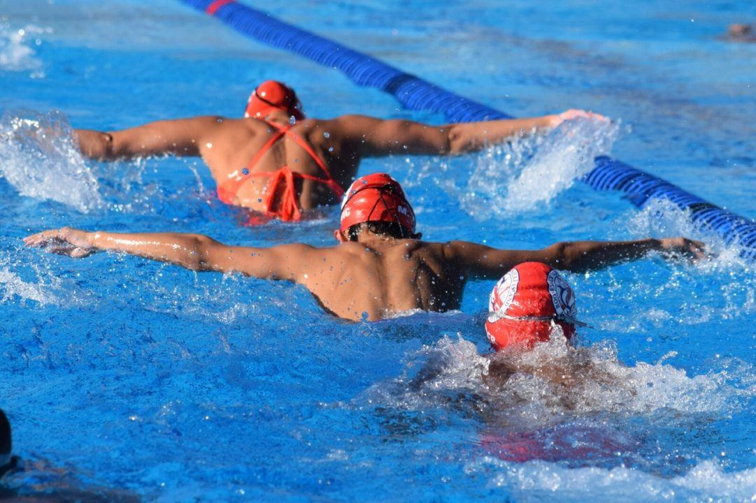 The Spectacular Turnaround  of the Roosevelt Island Marlins Swim Team: A Study in Resilience