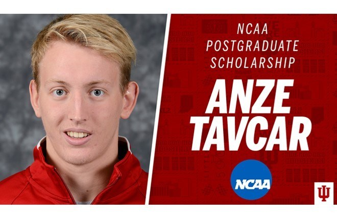 Indiana's Tavcar Earns NCAA Postgraduate Scholarship