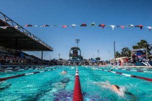 FINIS Set of the Week: Sharknado