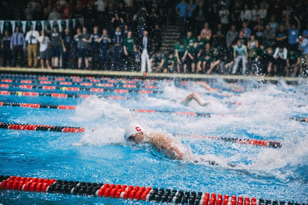 Cornell Men's Team Adds 7 More Swimmers, 1 Diver to Class of 2022