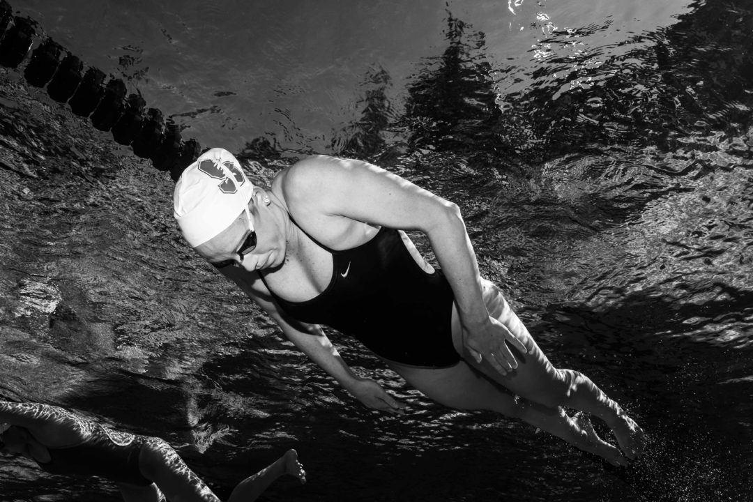 1012 New Swim Jobs You Might Love