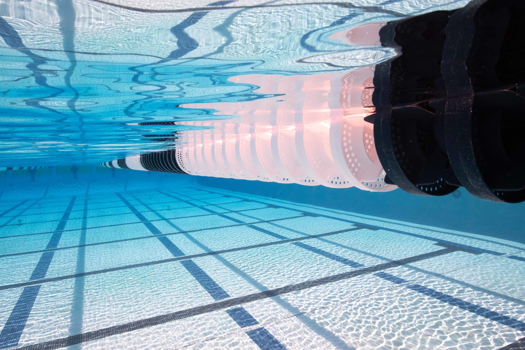 Caltech Lands High-Impact Recruit: Catherine Deng of Santa Clara Swim Club