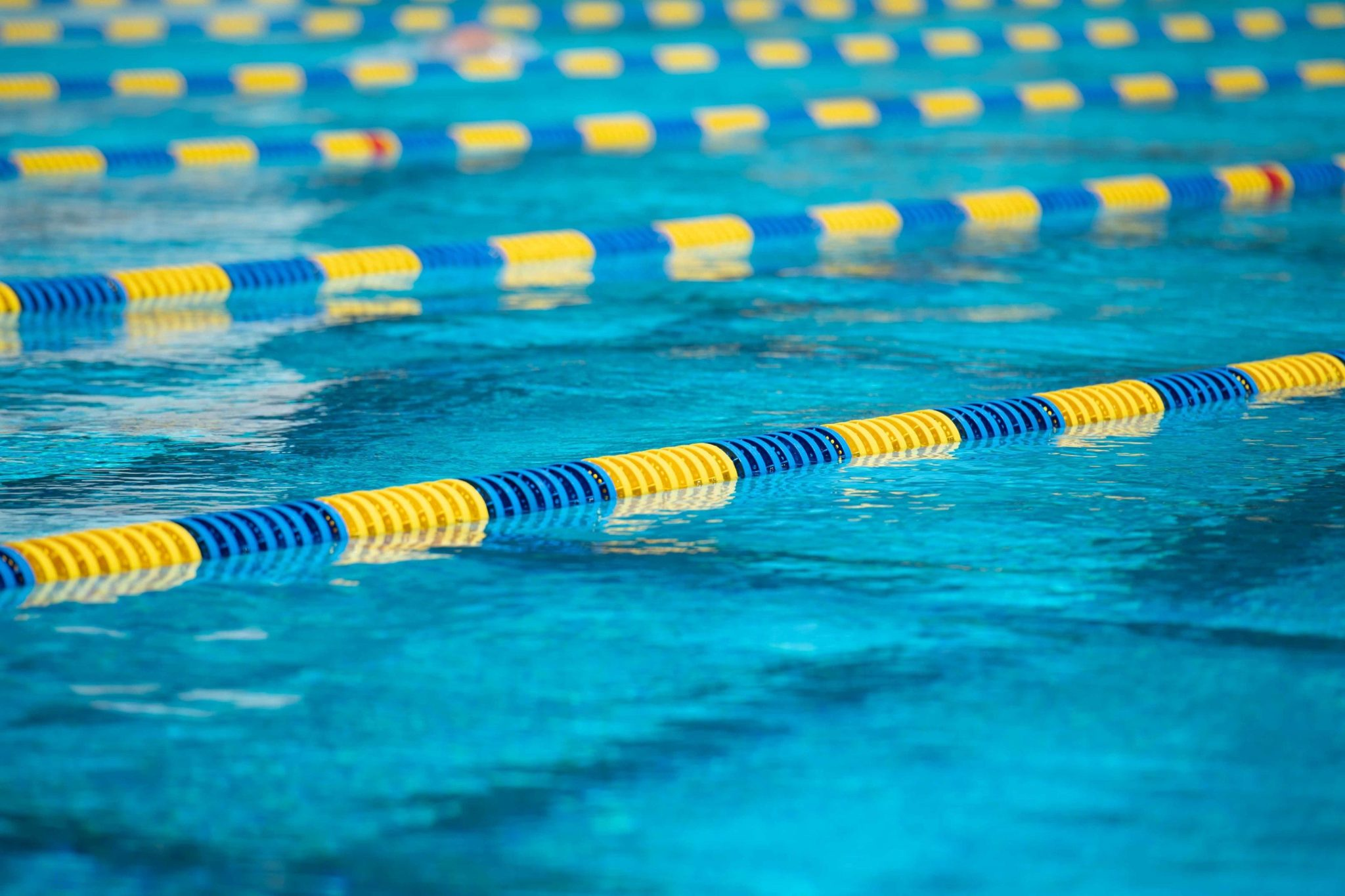 ccri adds swimming program with eye on varsity status