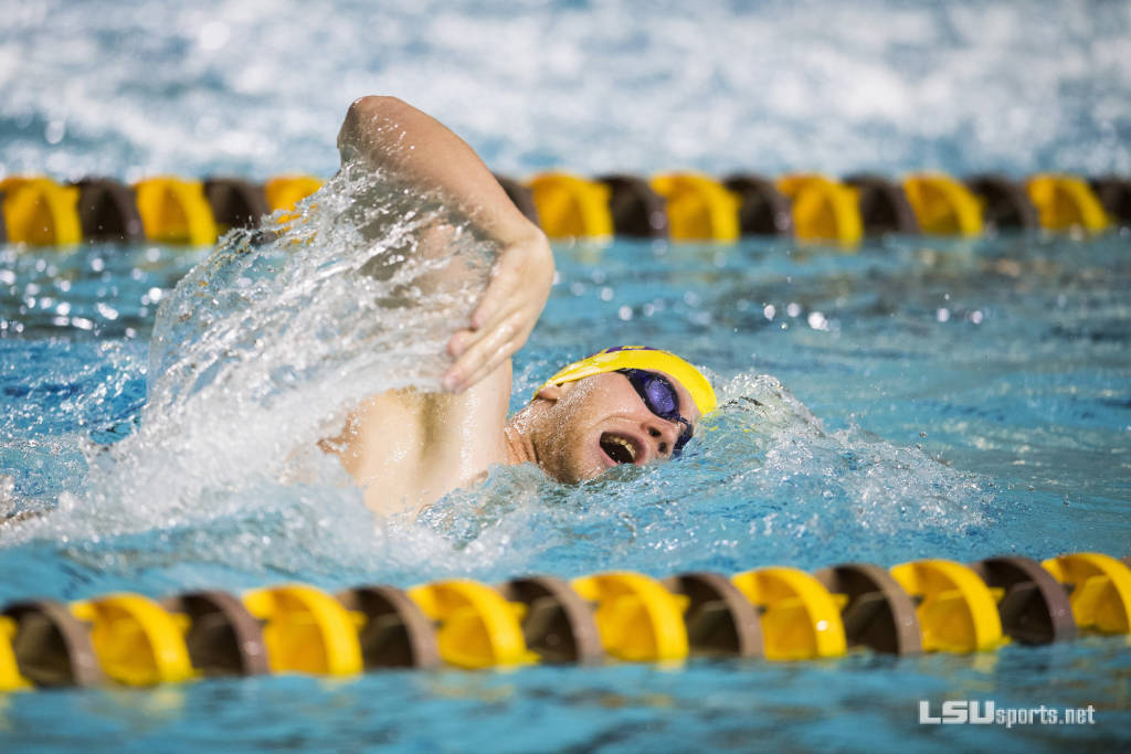LSU Splits Up for Two Weekend Meets in Texas