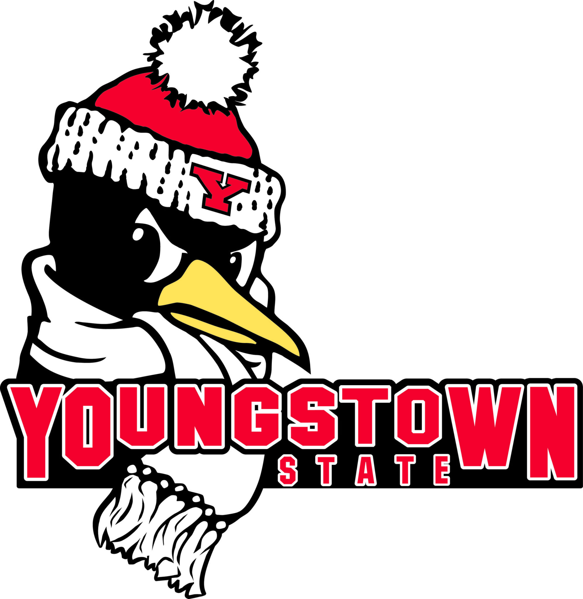 Youngstown State Makes Athletic Department Budget Cuts, Won't Cut Teams
