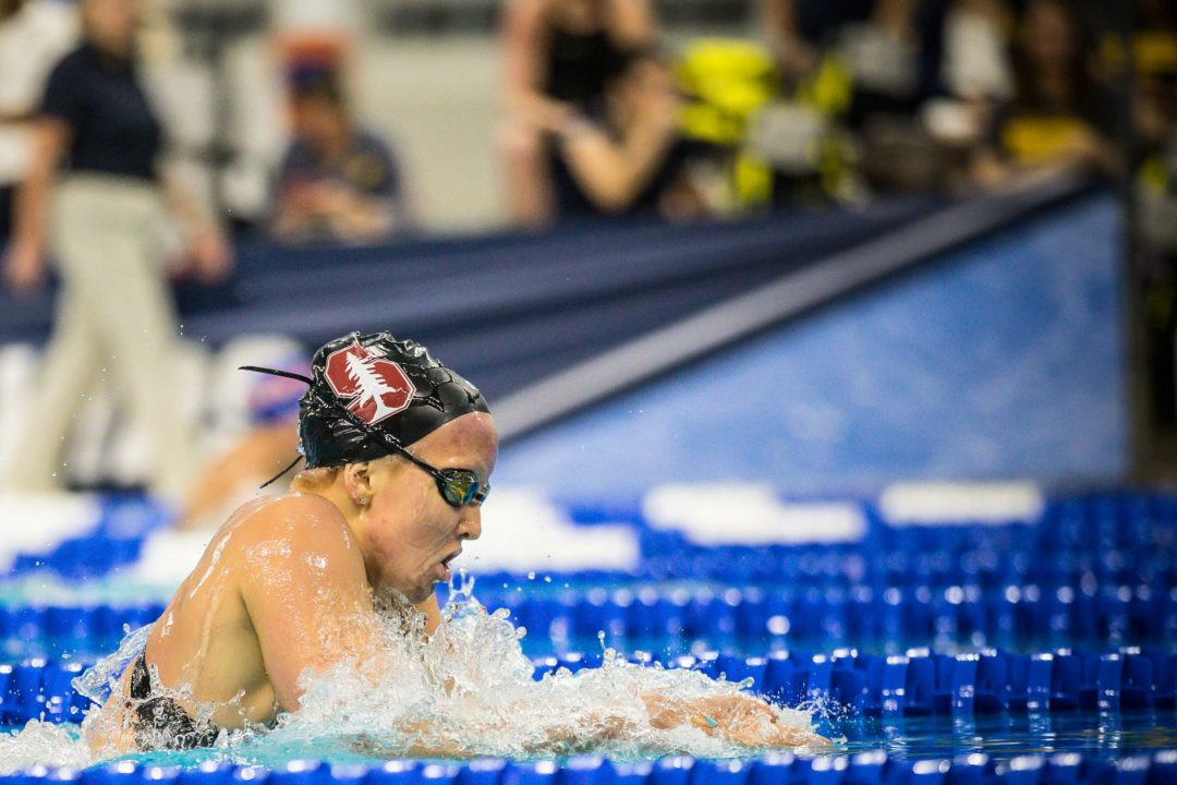 SwimSwam Pulse: 55% Pick Stanford at #1 For Women's NCAA Ranks