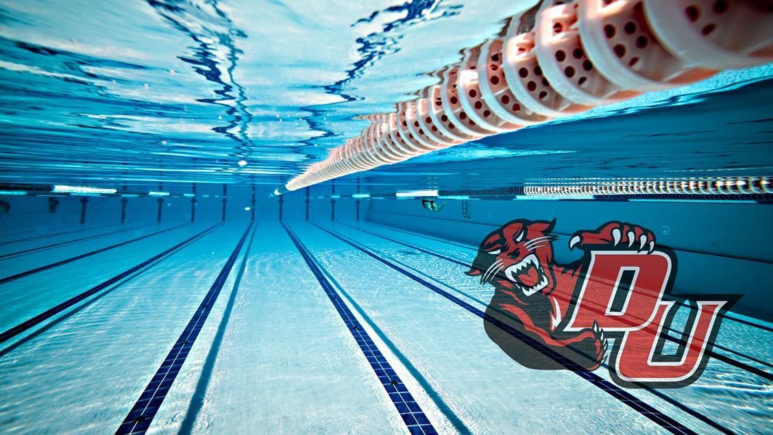 Davenport University Announces New Men's Swimming & Diving Program