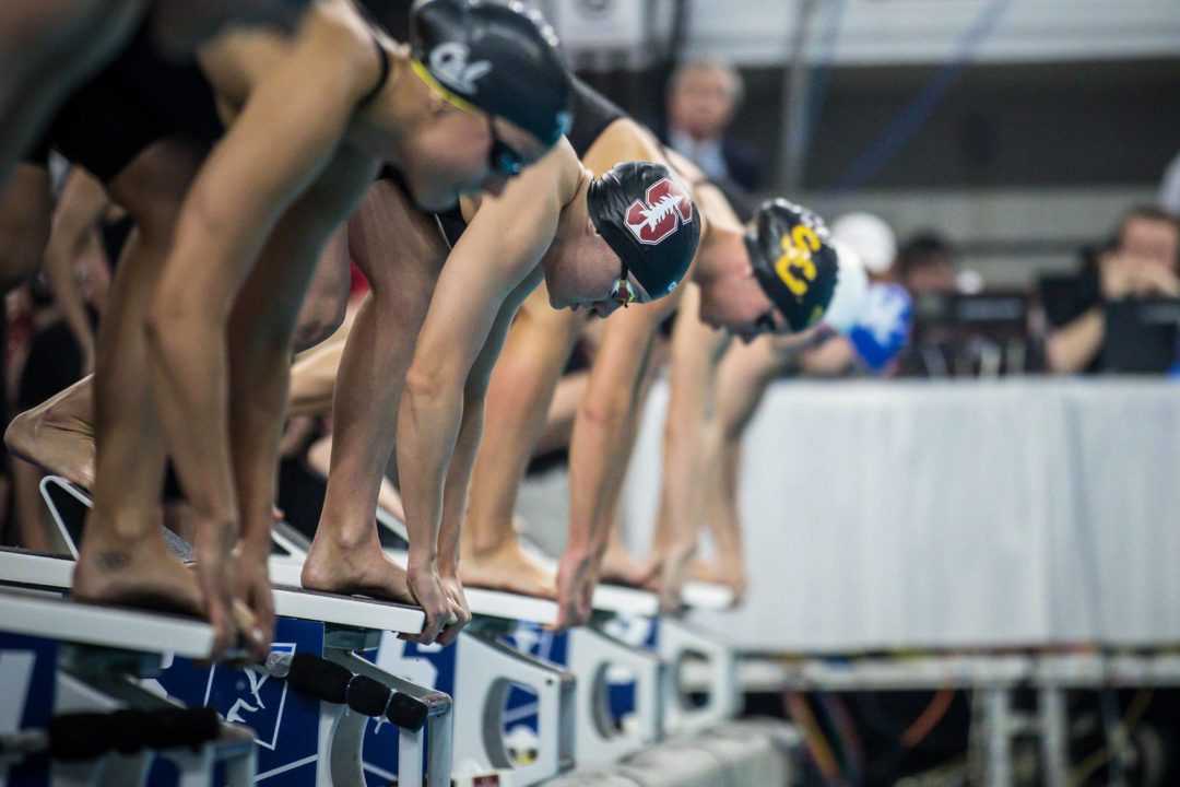2019 W. NCAA Championships: 800 Free Relay Race Videos