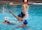 Stanford's Fischer Among 3 Water Polo Academic All-Americans